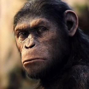 'Rise of the Planet of the Apes' Has Some Simian Swagger