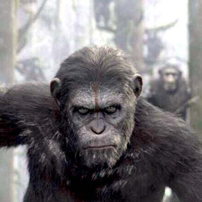 My Rambling, Unstructured Thoughts About 'Dawn of the Planet of the Apes'
